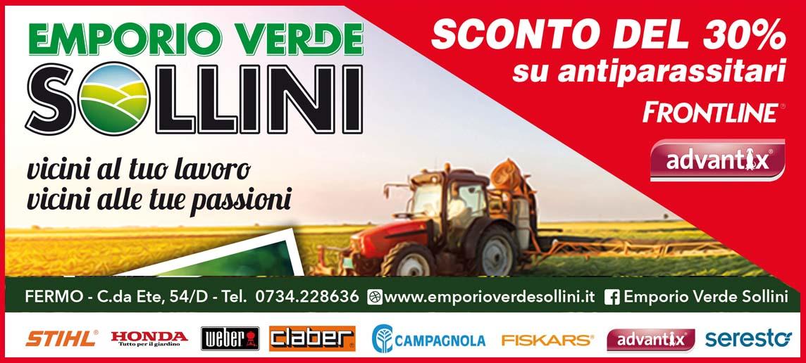 Sollini - Marzo 2020